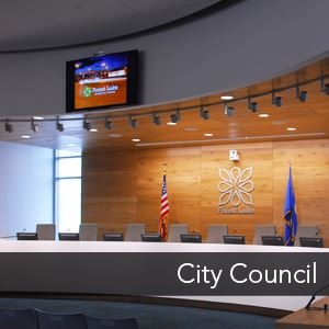 Image Link to the City Council
